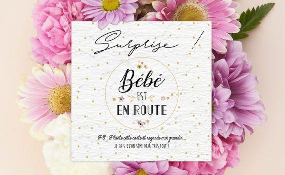 La fille au Noeud Rouge - carte surprise annonce grossesse bébé collection petits pois fleuris